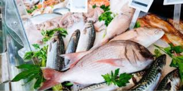 Poissons frais et de qualité issus de la pêche du jour